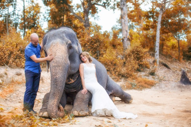 Wedding photographer - koh samui